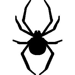 選択した画像 蜘蛛の巣 素材 無料アイコンダウンロードサイト